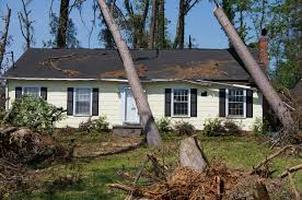 Trees Fell on Roof Henrico Roofing VA